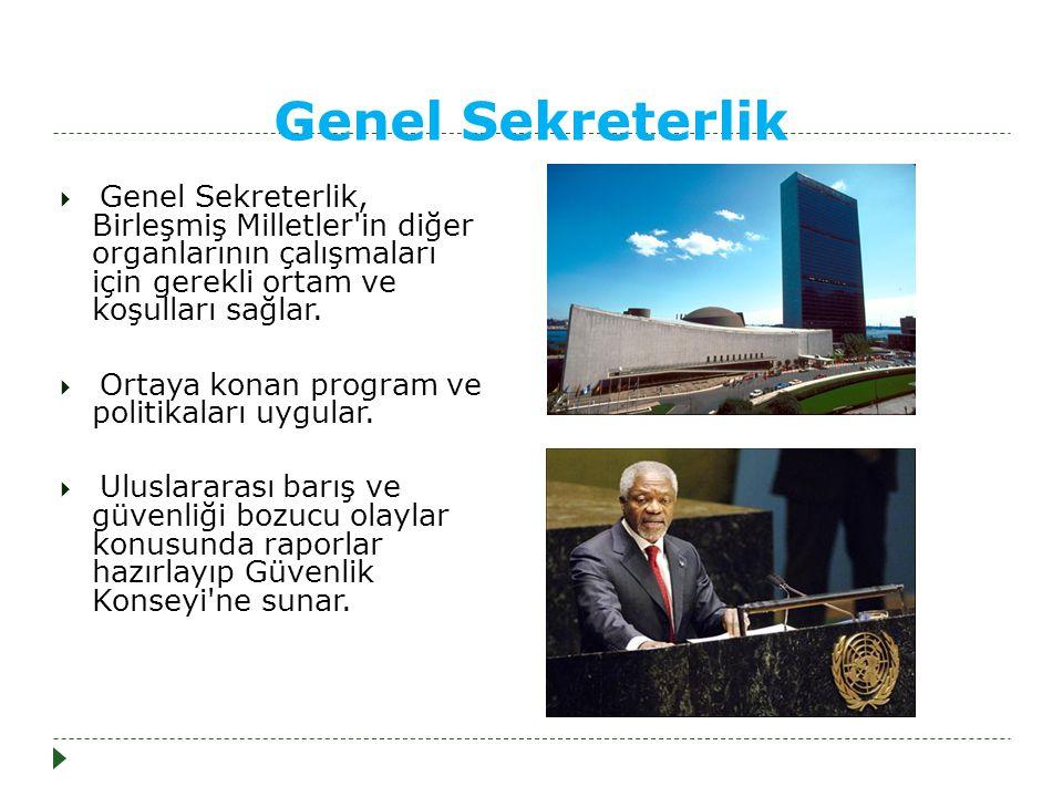 Genel Sekreterlik Genel Sekreterlik, Birleşmiş Milletler in diğer organlarının çalışmaları için gerekli ortam ve koşulları sağlar.