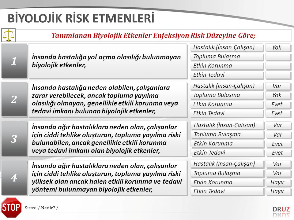 Tanımlanan Biyolojik Etkenler Enfeksiyon Risk Düzeyine Göre;