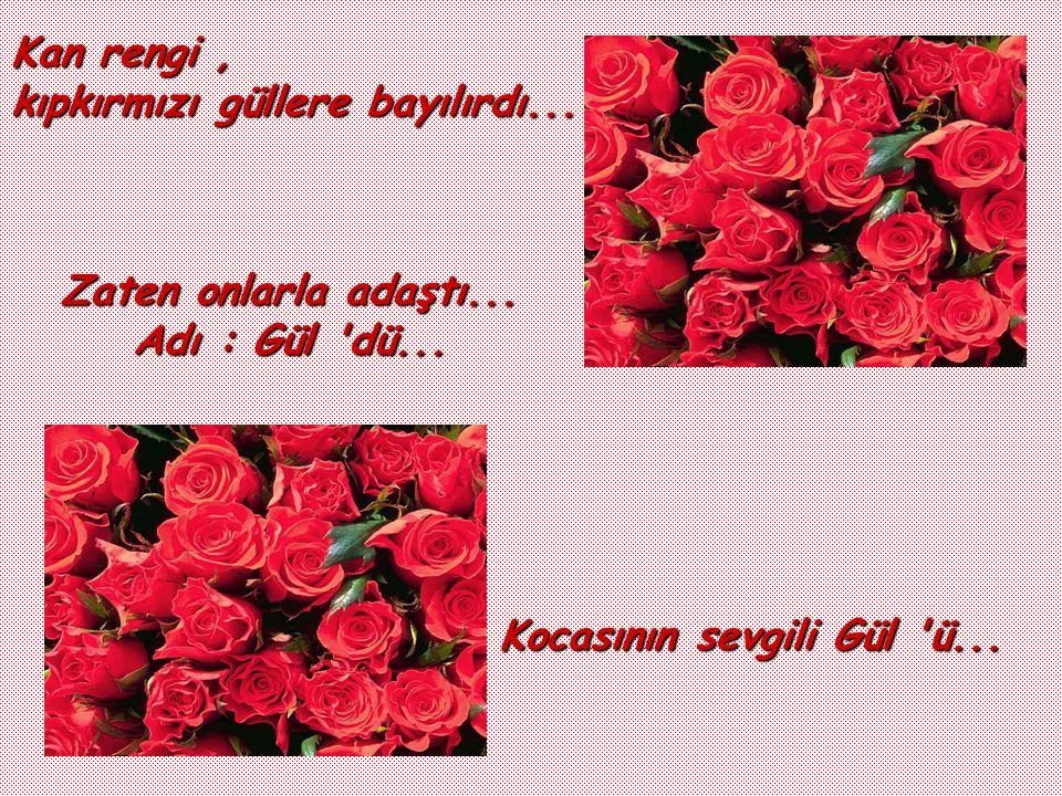 Kan rengi , kıpkırmızı güllere bayılırdı... Zaten onlarla adaştı...