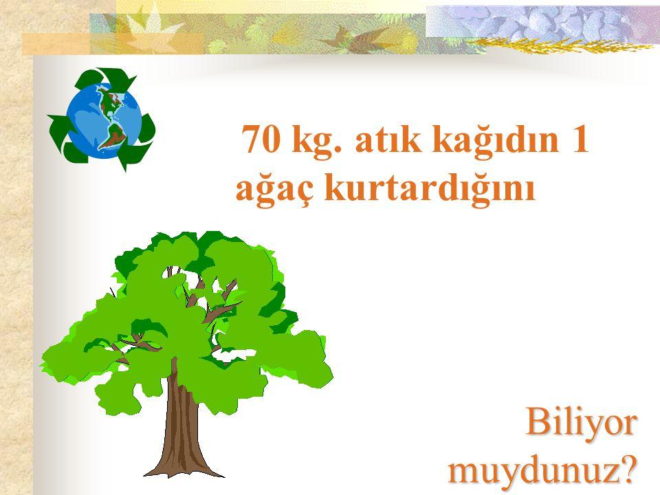 70 kg. atık kağıdın 1 ağaç kurtardığını