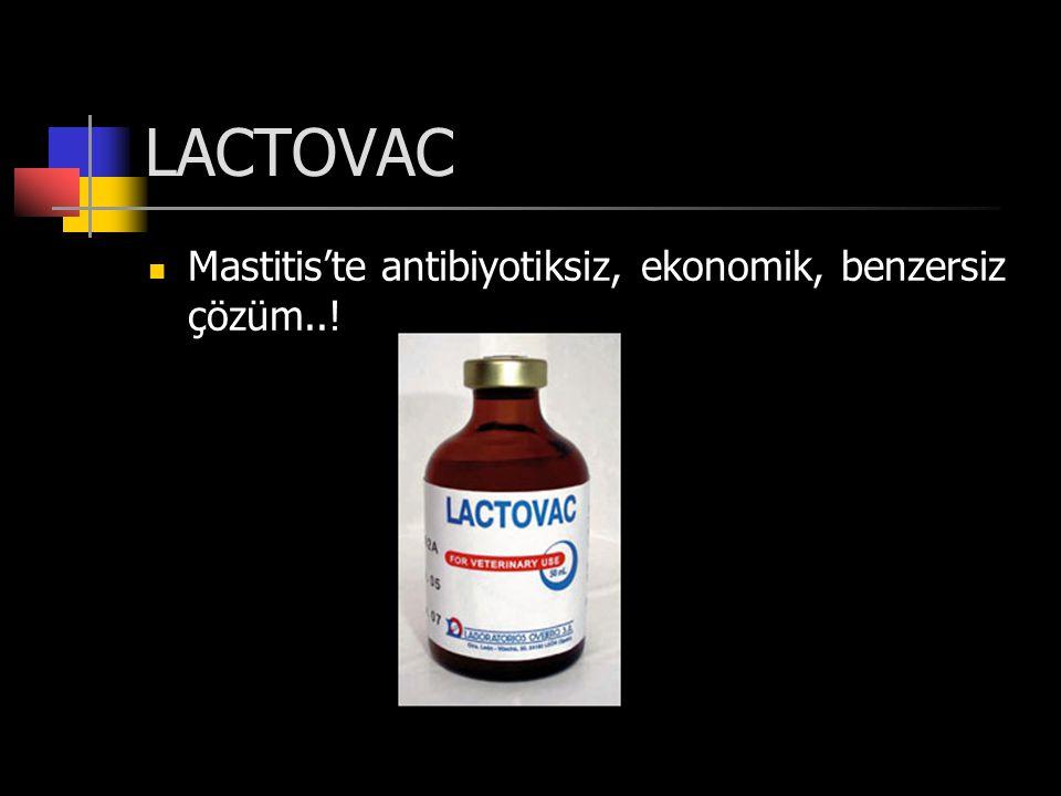 LACTOVAC Mastitis'te antibiyotiksiz, ekonomik, benzersiz çözüm..!