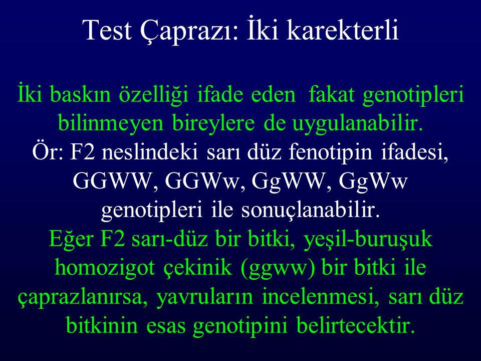 Test Çaprazı: İki karekterli İki baskın özelliği ifade eden fakat genotipleri bilinmeyen bireylere de uygulanabilir.