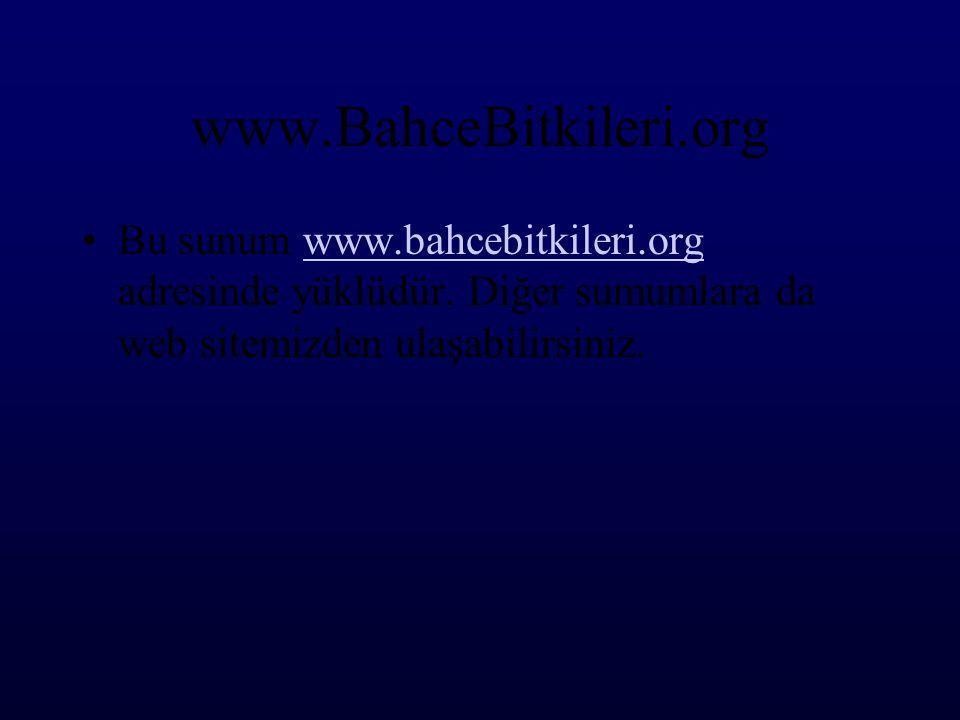 www.BahceBitkileri.org Bu sunum www.bahcebitkileri.org adresinde yüklüdür.