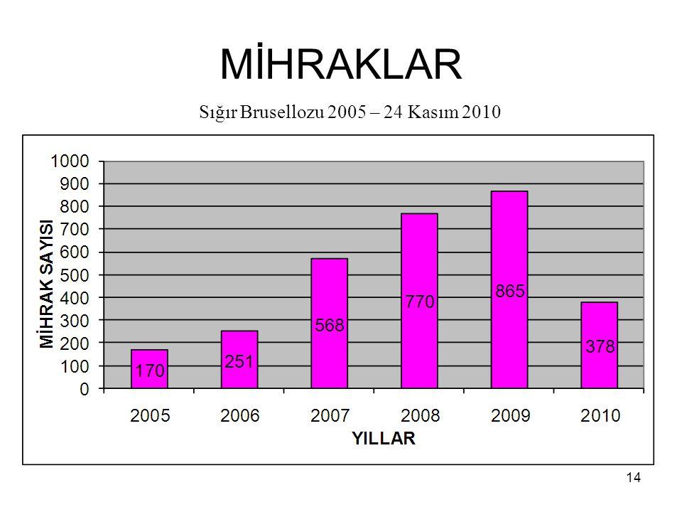 MİHRAKLAR Sığır Brusellozu 2005 – 24 Kasım 2010