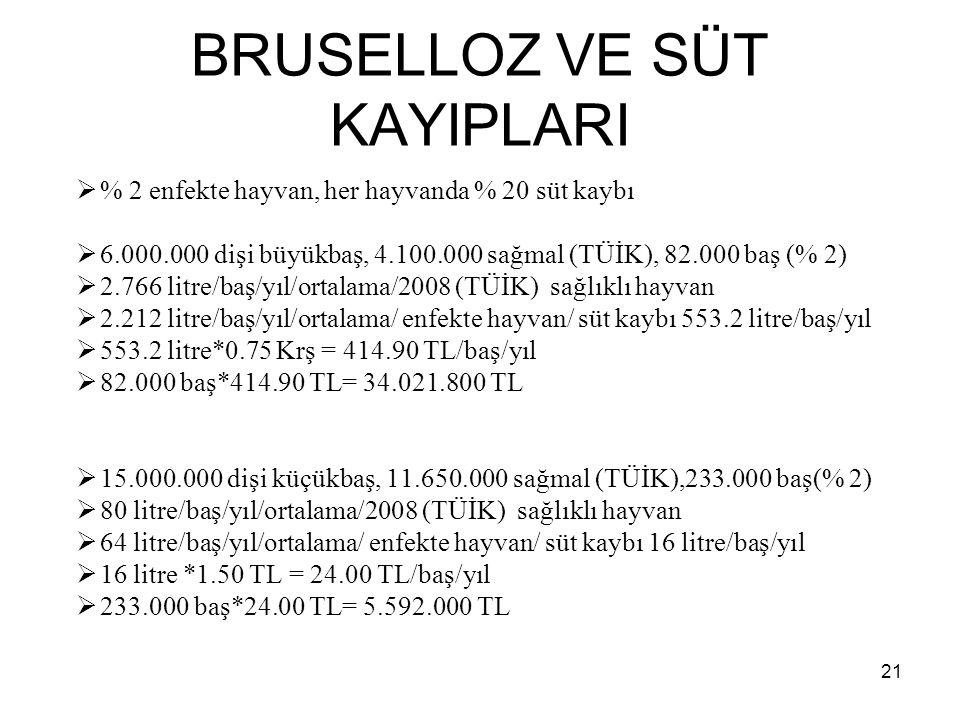 BRUSELLOZ VE SÜT KAYIPLARI