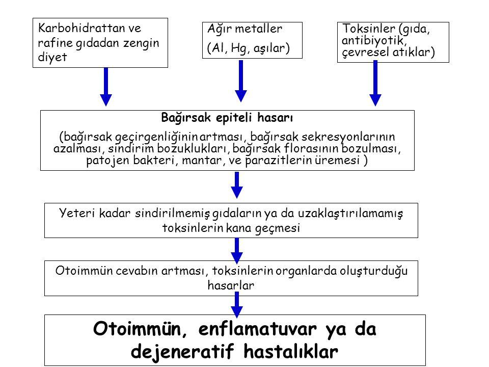 Otoimmün, enflamatuvar ya da dejeneratif hastalıklar