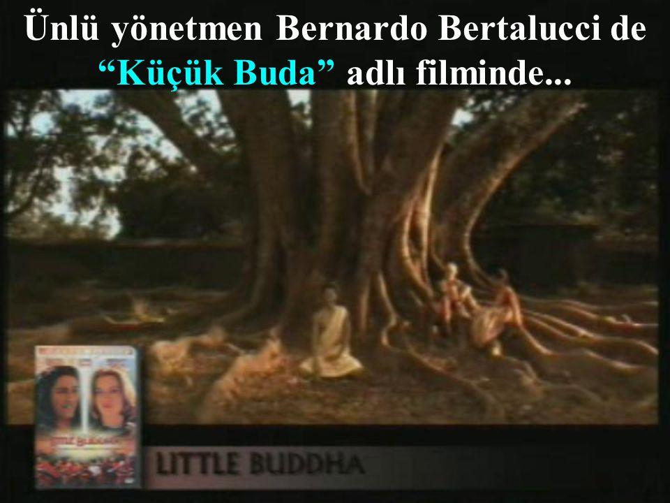 Ünlü yönetmen Bernardo Bertalucci de Küçük Buda adlı filminde...