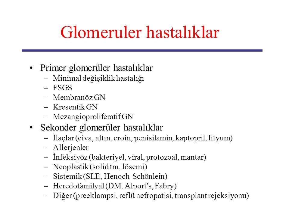 Glomeruler hastalıklar