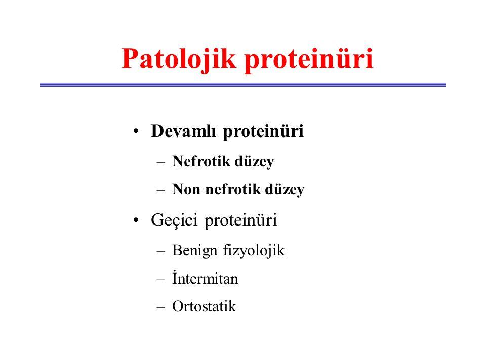 Patolojik proteinüri Devamlı proteinüri Geçici proteinüri
