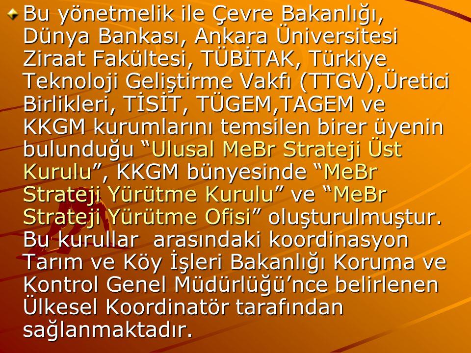 Bu yönetmelik ile Çevre Bakanlığı, Dünya Bankası, Ankara Üniversitesi Ziraat Fakültesi, TÜBİTAK, Türkiye Teknoloji Geliştirme Vakfı (TTGV),Üretici Birlikleri, TİSİT, TÜGEM,TAGEM ve KKGM kurumlarını temsilen birer üyenin bulunduğu Ulusal MeBr Strateji Üst Kurulu , KKGM bünyesinde MeBr Strateji Yürütme Kurulu ve MeBr Strateji Yürütme Ofisi oluşturulmuştur.