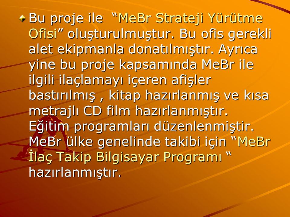 Bu proje ile MeBr Strateji Yürütme Ofisi oluşturulmuştur