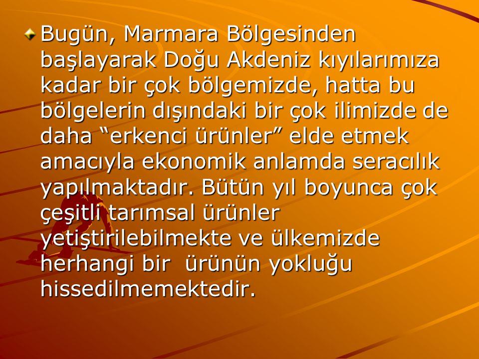 Bugün, Marmara Bölgesinden başlayarak Doğu Akdeniz kıyılarımıza kadar bir çok bölgemizde, hatta bu bölgelerin dışındaki bir çok ilimizde de daha erkenci ürünler elde etmek amacıyla ekonomik anlamda seracılık yapılmaktadır.