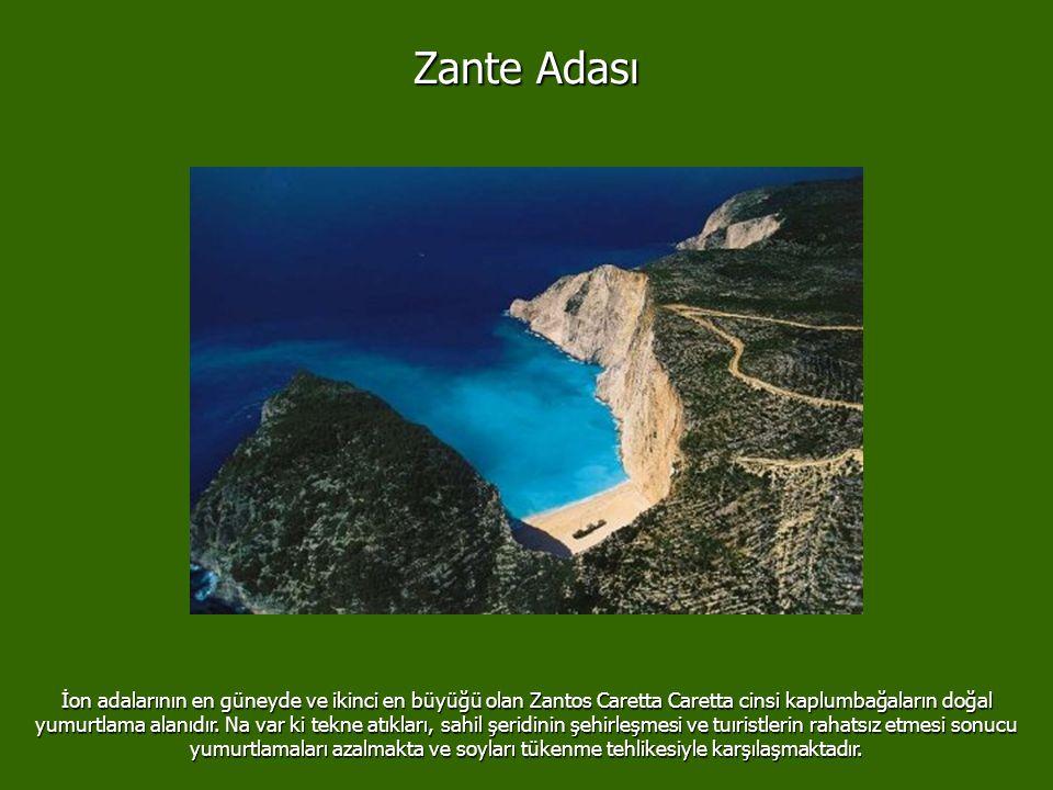 Zante Adası
