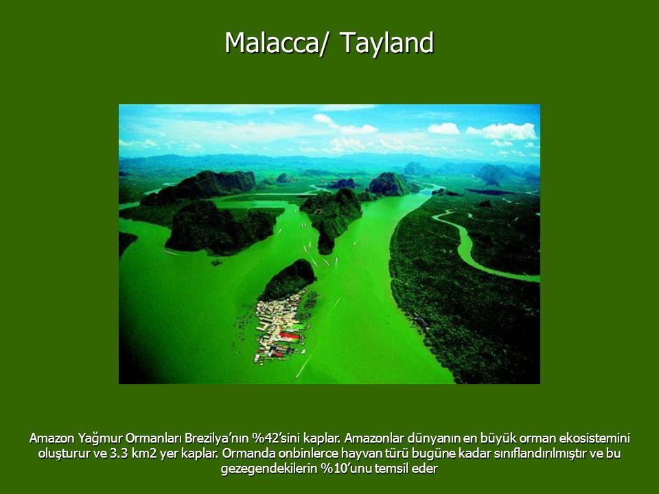 Malacca/ Tayland