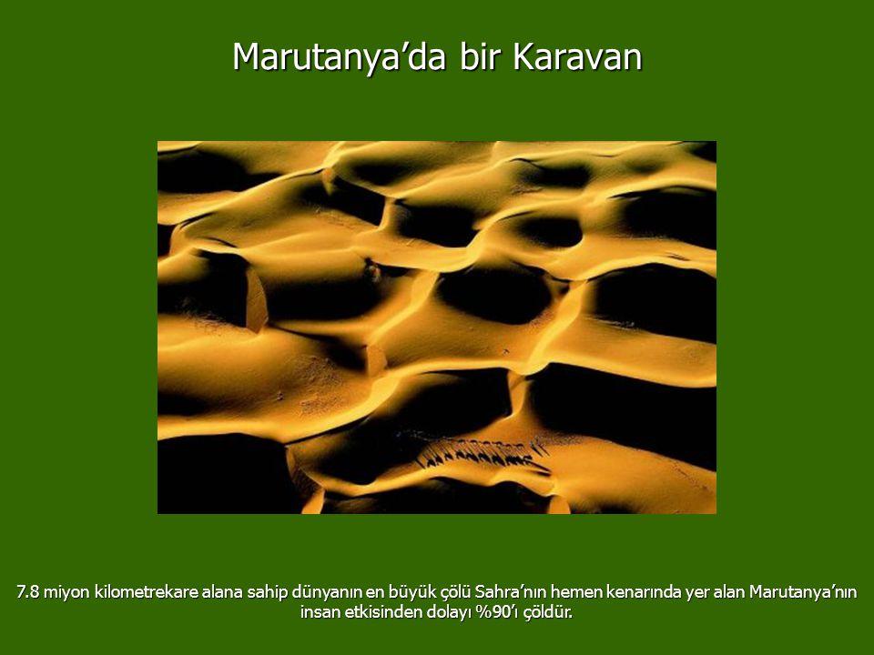 Marutanya'da bir Karavan