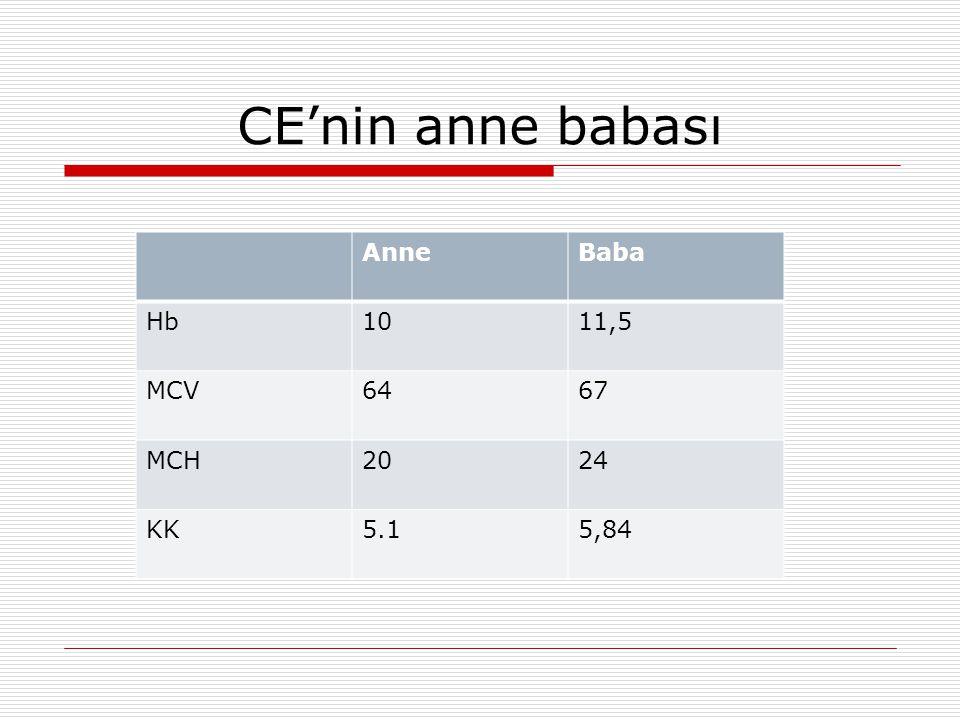 CE'nin anne babası Anne Baba Hb 10 11,5 MCV 64 67 MCH 20 24 KK 5.1