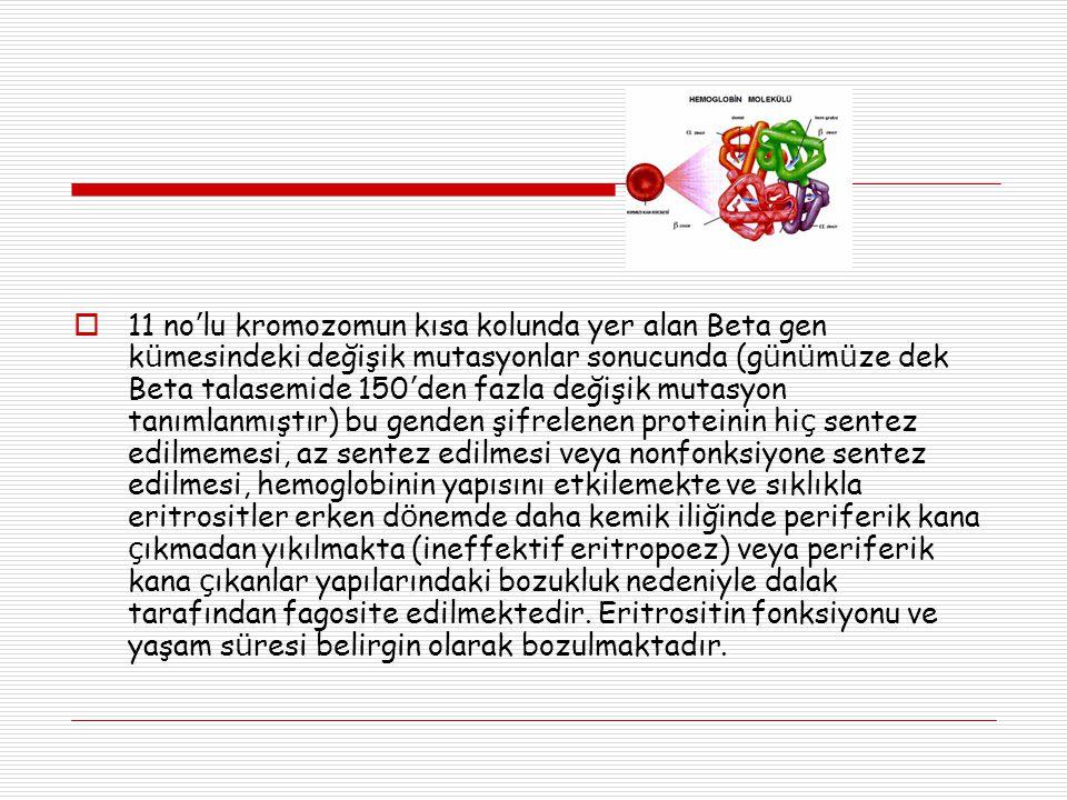 11 no'lu kromozomun kısa kolunda yer alan Beta gen kümesindeki değişik mutasyonlar sonucunda (günümüze dek Beta talasemide 150'den fazla değişik mutasyon tanımlanmıştır) bu genden şifrelenen proteinin hiç sentez edilmemesi, az sentez edilmesi veya nonfonksiyone sentez edilmesi, hemoglobinin yapısını etkilemekte ve sıklıkla eritrositler erken dönemde daha kemik iliğinde periferik kana çıkmadan yıkılmakta (ineffektif eritropoez) veya periferik kana çıkanlar yapılarındaki bozukluk nedeniyle dalak tarafından fagosite edilmektedir.