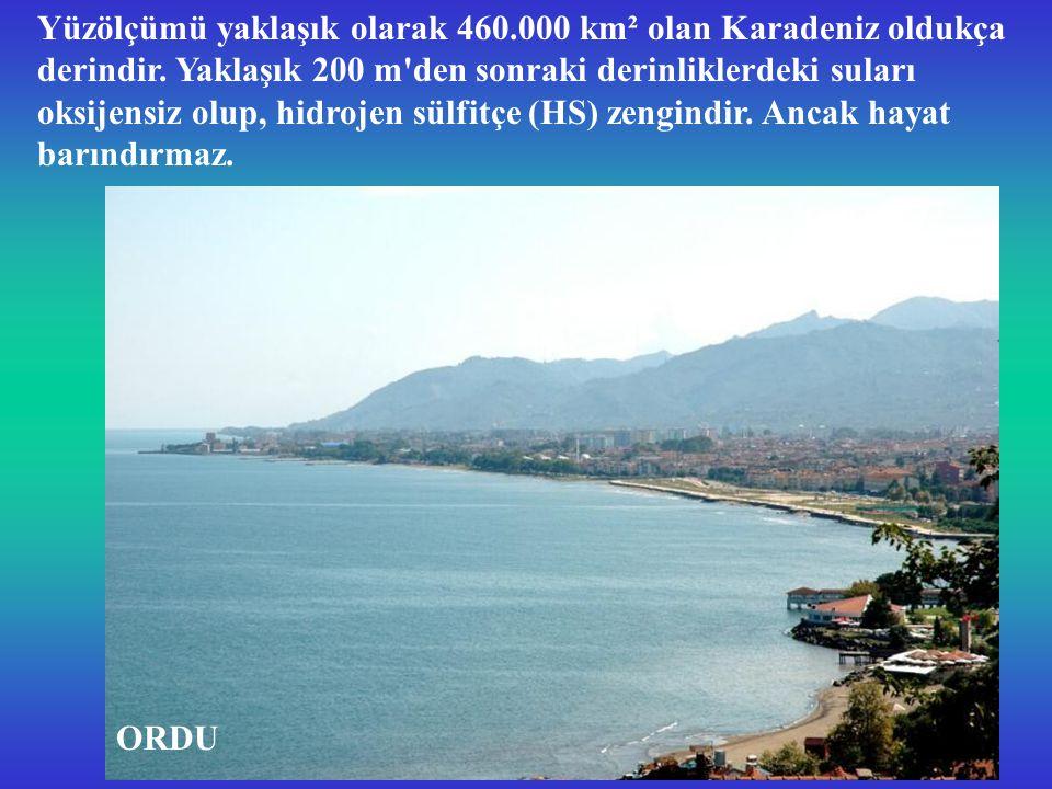 Yüzölçümü yaklaşık olarak 460. 000 km² olan Karadeniz oldukça derindir