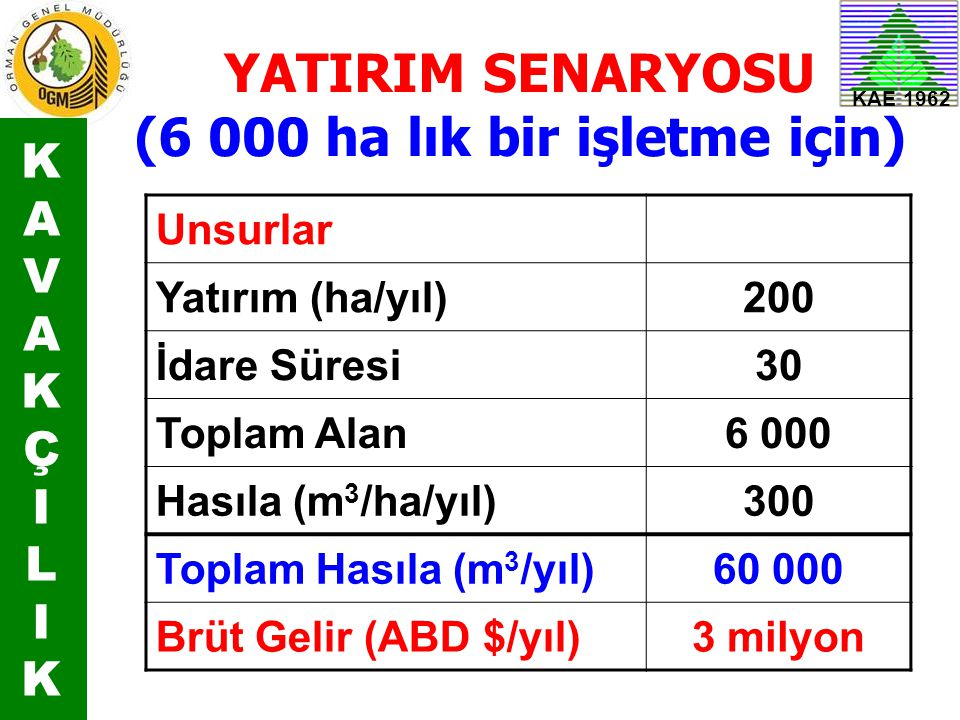 YATIRIM SENARYOSU (6 000 ha lık bir işletme için)