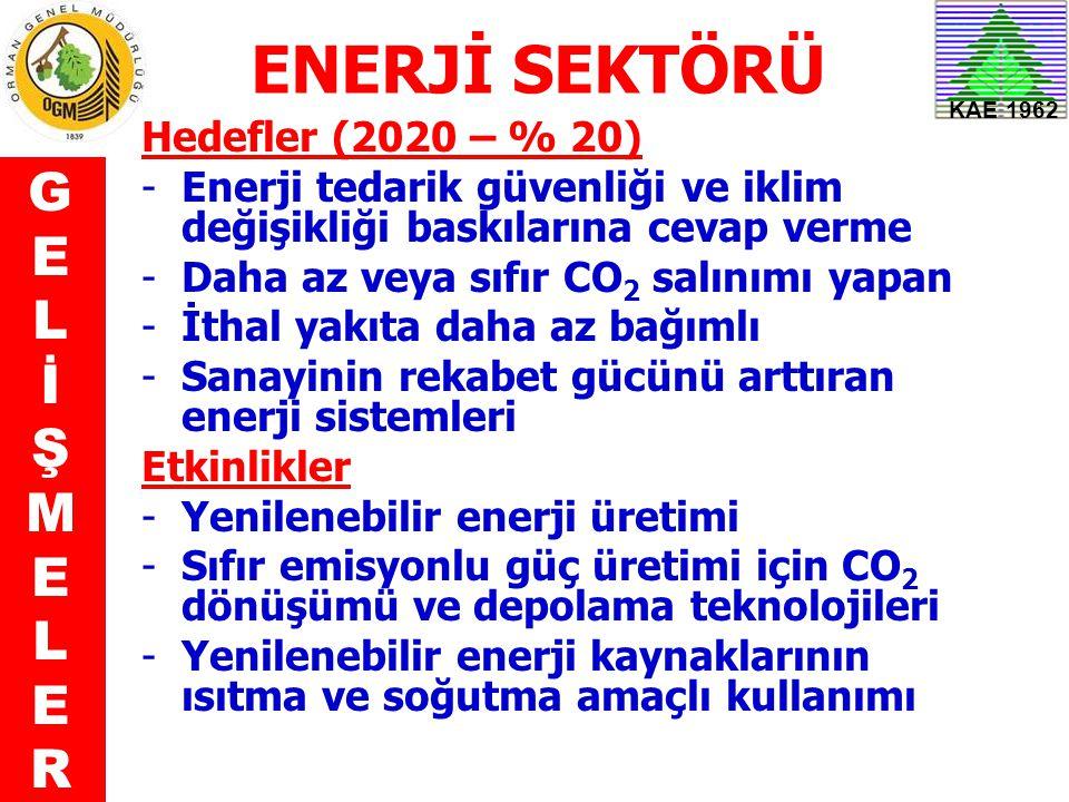 ENERJİ SEKTÖRÜ G E L İ Ş M R Hedefler (2020 – % 20)