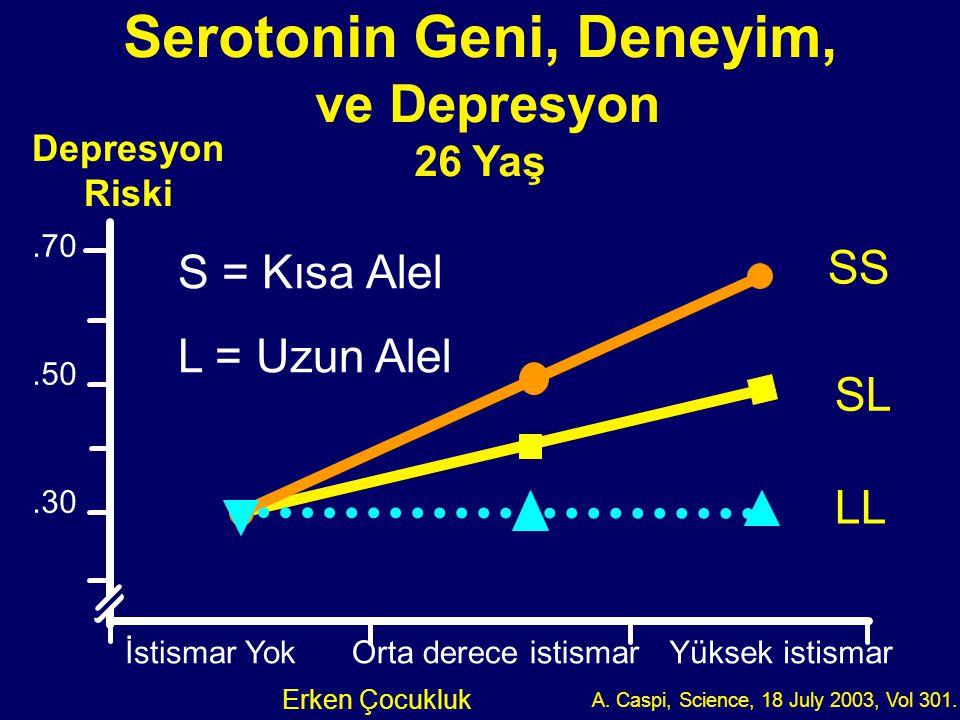 Serotonin Geni, Deneyim,