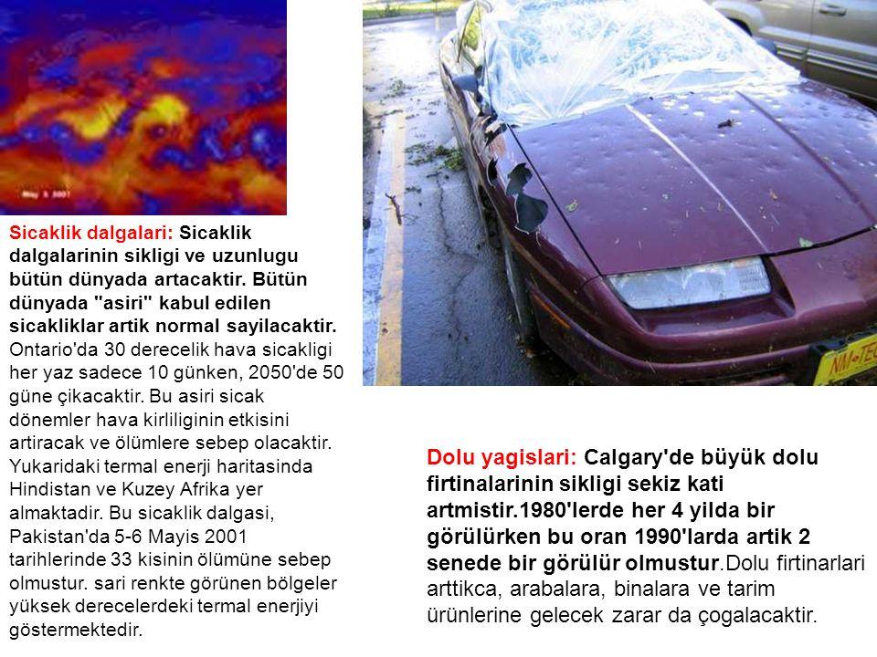Sicaklik dalgalari: Sicaklik dalgalarinin sikligi ve uzunlugu bütün dünyada artacaktir. Bütün dünyada asiri kabul edilen sicakliklar artik normal sayilacaktir. Ontario da 30 derecelik hava sicakligi her yaz sadece 10 günken, 2050 de 50 güne çikacaktir. Bu asiri sicak dönemler hava kirliliginin etkisini artiracak ve ölümlere sebep olacaktir.