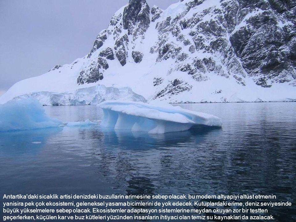 Antartika daki sicaklik artisi denizdeki buzullarin erimesine sebep olacak.