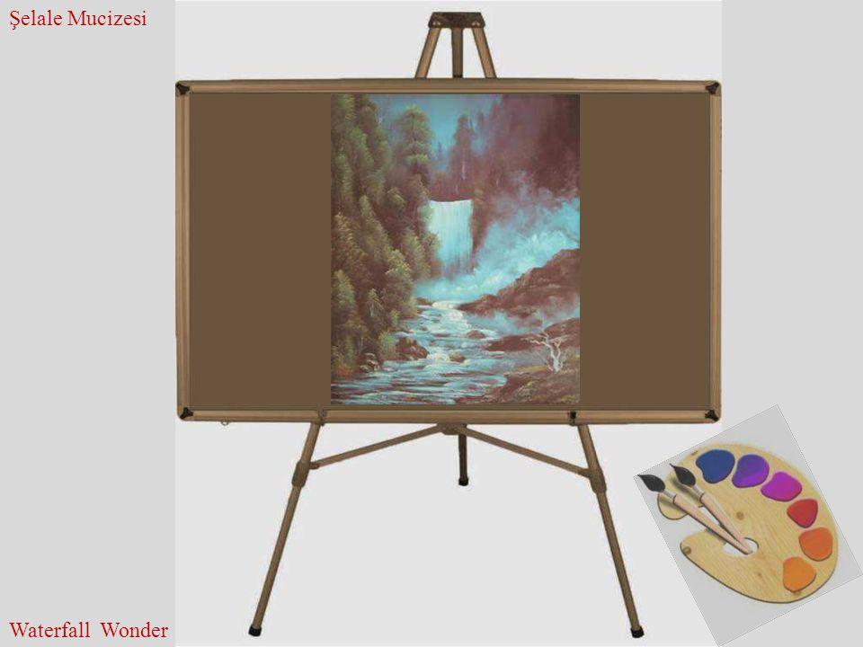 Şelale Mucizesi Waterfall Wonder