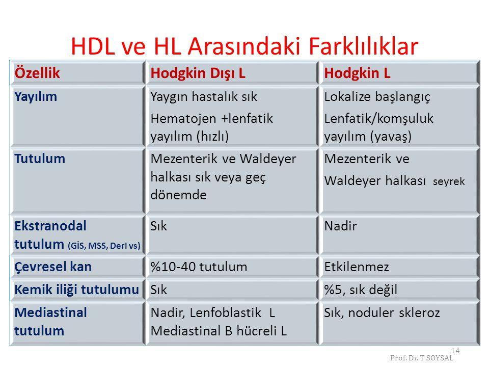 HDL ve HL Arasındaki Farklılıklar
