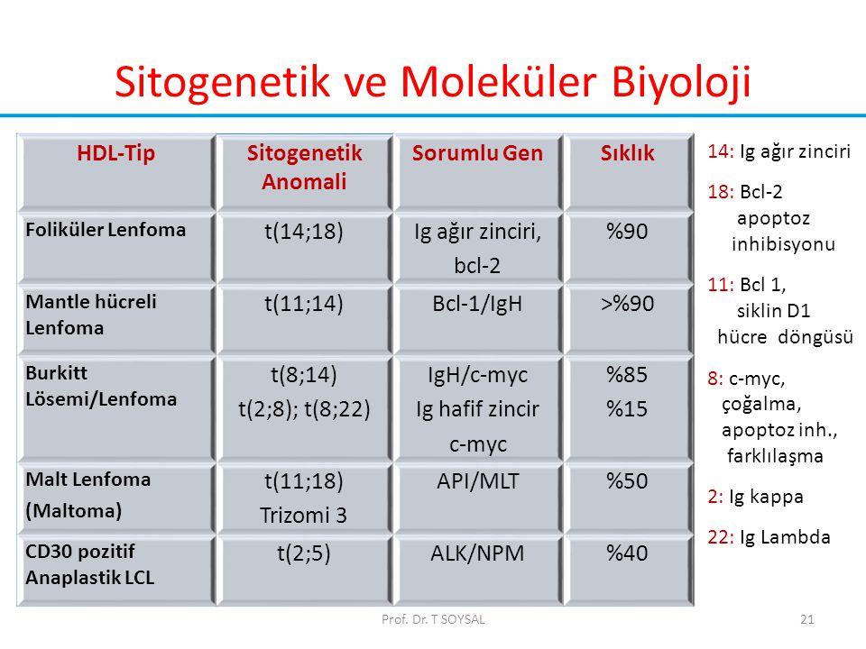 Sitogenetik ve Moleküler Biyoloji