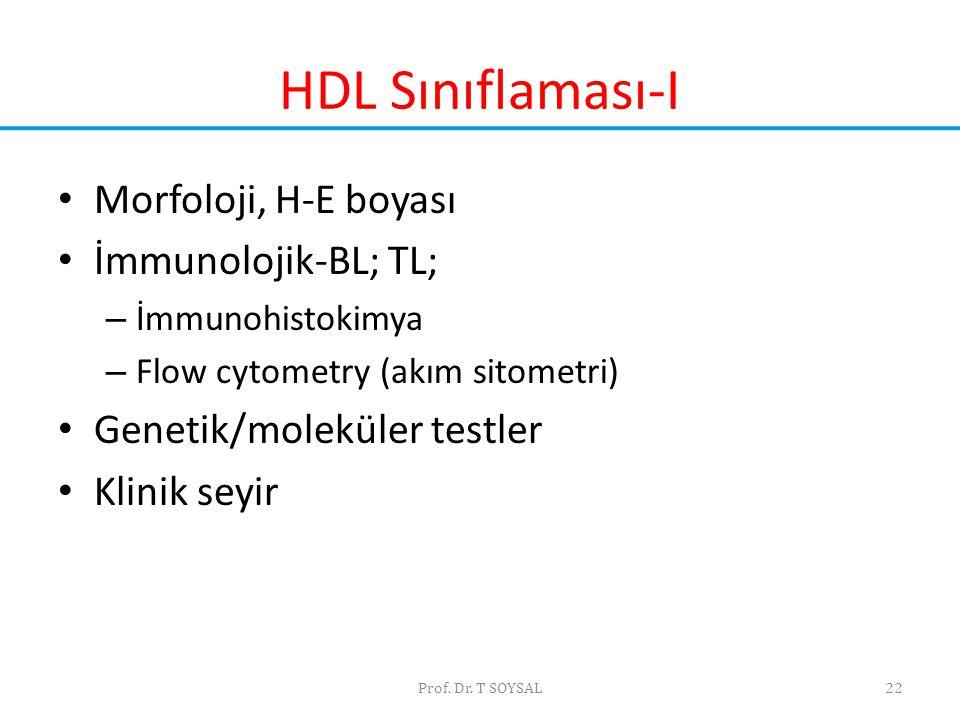 HDL Sınıflaması-I Morfoloji, H-E boyası İmmunolojik-BL; TL;