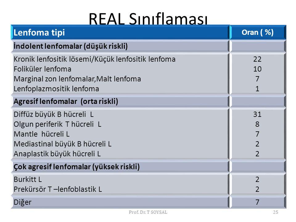 REAL Sınıflaması Lenfoma tipi Oran ( %)