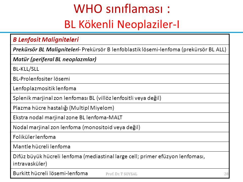 WHO sınıflaması : BL Kökenli Neoplaziler-I