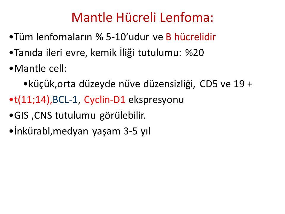 Mantle Hücreli Lenfoma: