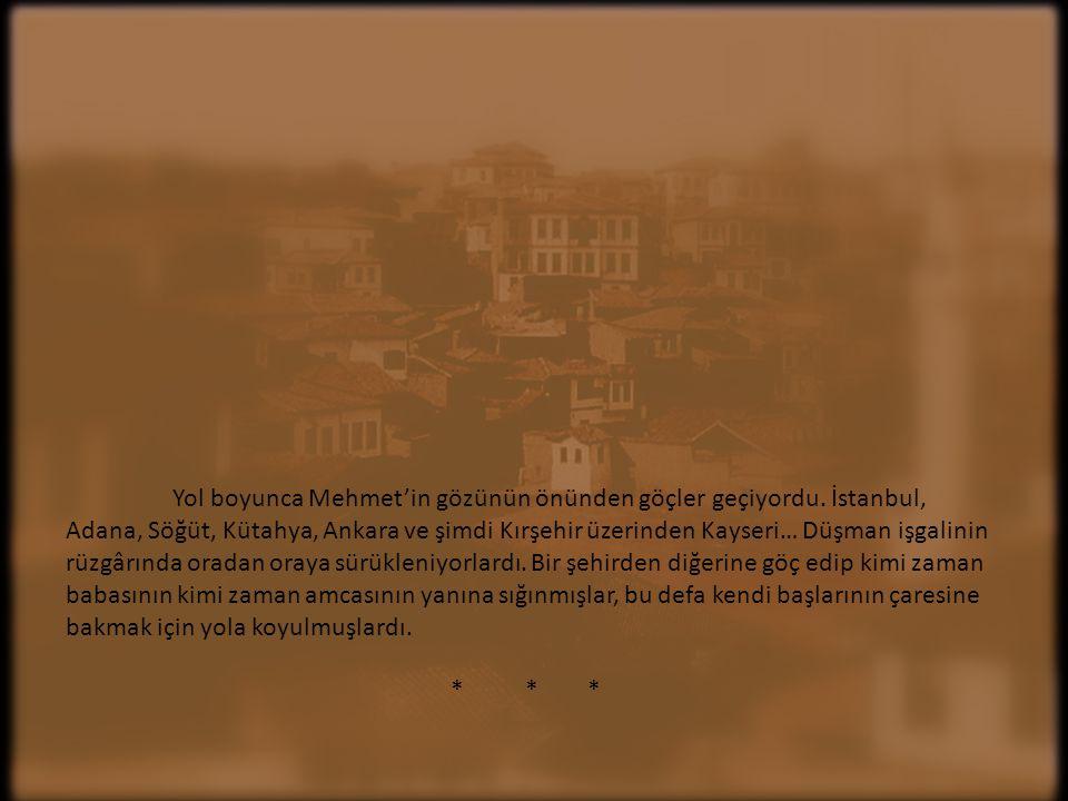 Yol boyunca Mehmet'in gözünün önünden göçler geçiyordu