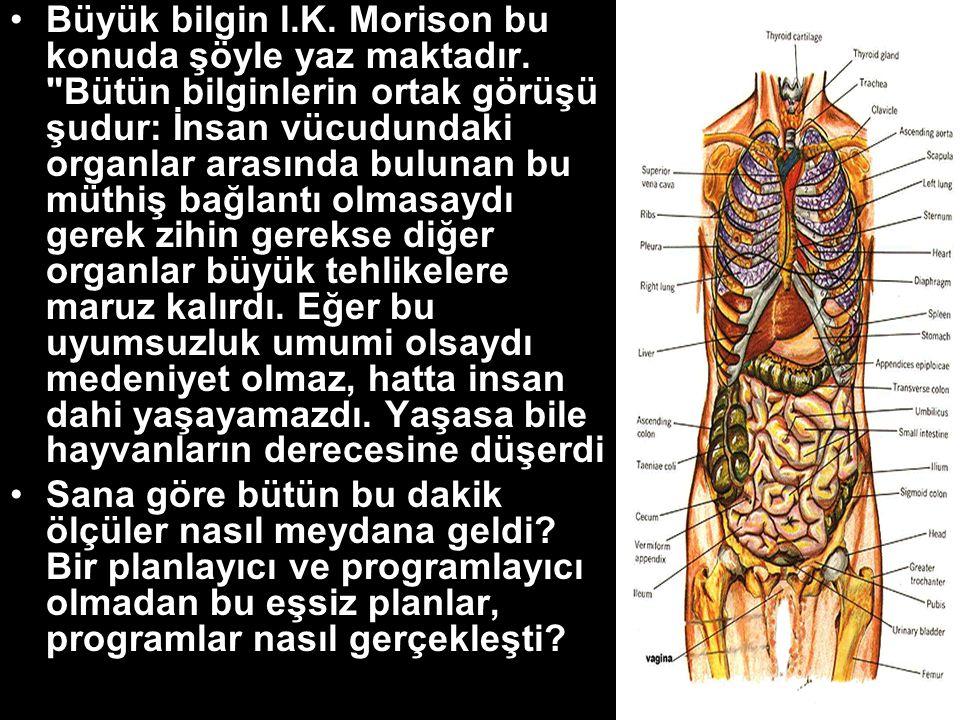 Büyük bilgin l. K. Morison bu konuda şöyle yaz maktadır