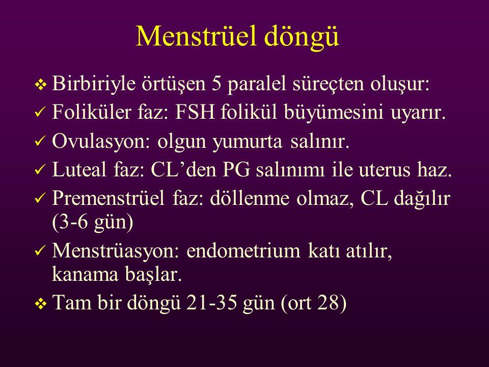 Menstrüel döngü Birbiriyle örtüşen 5 paralel süreçten oluşur: