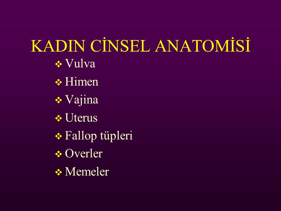 KADIN CİNSEL ANATOMİSİ