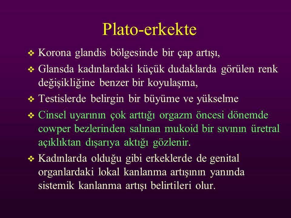 Plato-erkekte Korona glandis bölgesinde bir çap artışı,