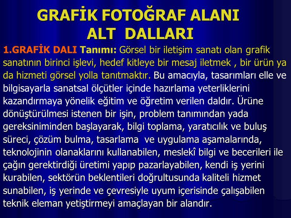 GRAFİK FOTOĞRAF ALANI ALT DALLARI