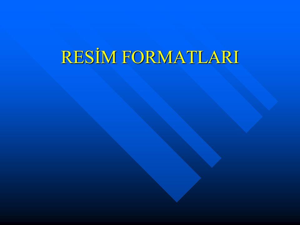 RESİM FORMATLARI