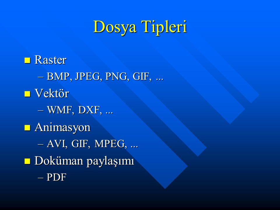 Dosya Tipleri Raster Vektör Animasyon Doküman paylaşımı