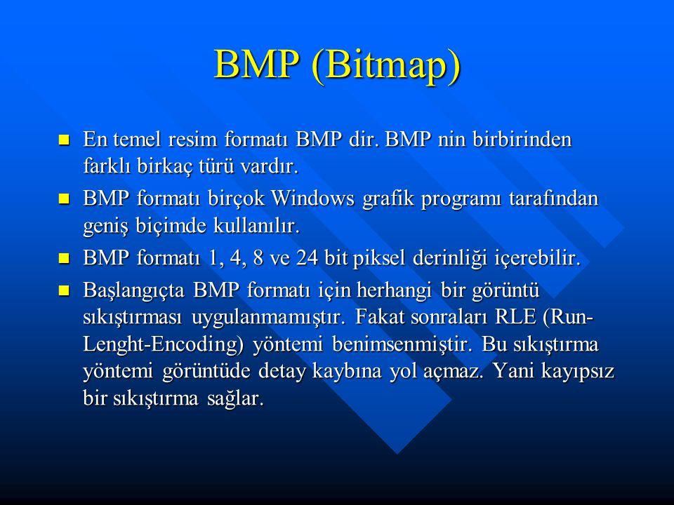 BMP (Bitmap) En temel resim formatı BMP dir. BMP nin birbirinden farklı birkaç türü vardır.