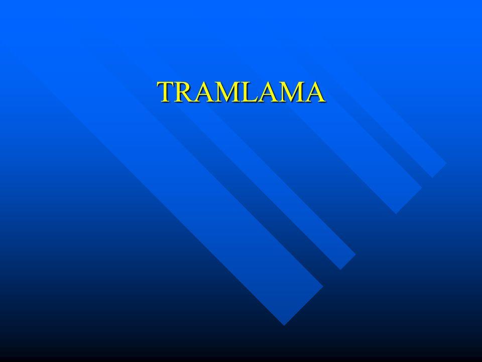 TRAMLAMA