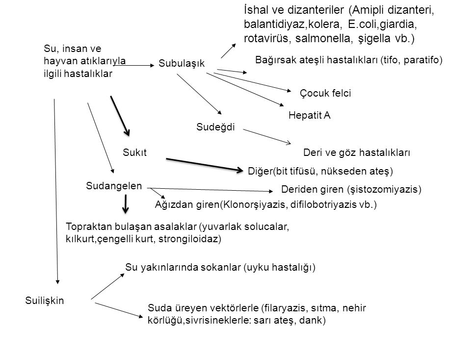 İshal ve dizanteriler (Amipli dizanteri, balantidiyaz,kolera, E