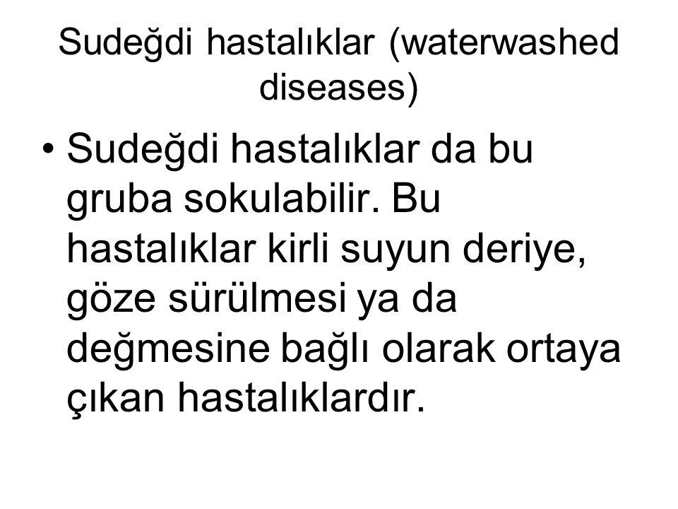 Sudeğdi hastalıklar (waterwashed diseases)