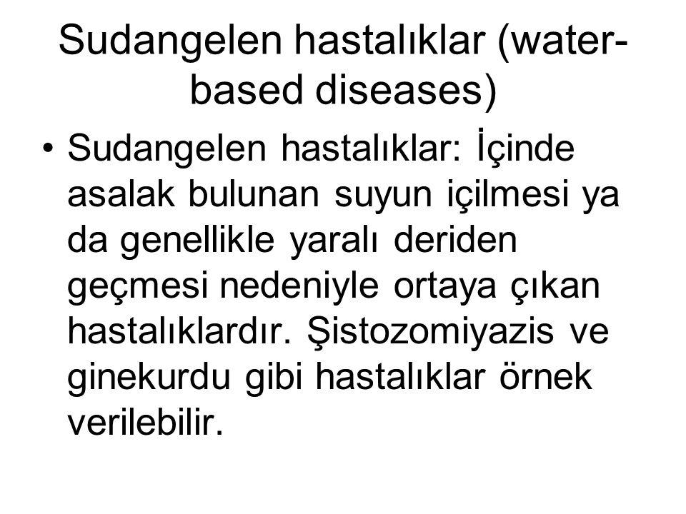 Sudangelen hastalıklar (water-based diseases)