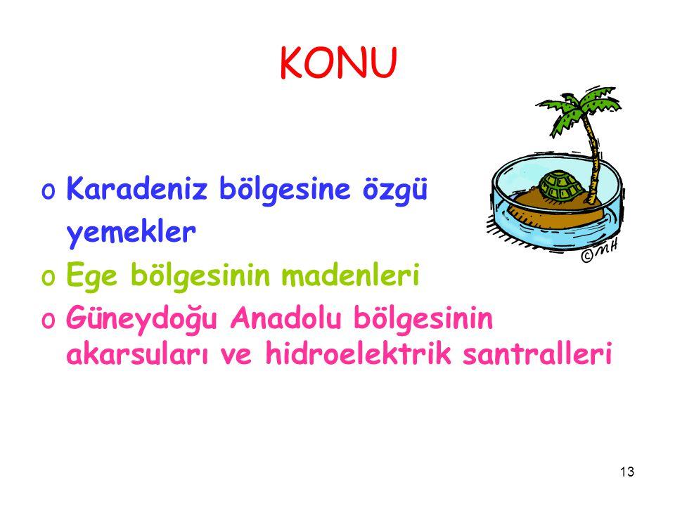 KONU Karadeniz bölgesine özgü yemekler Ege bölgesinin madenleri