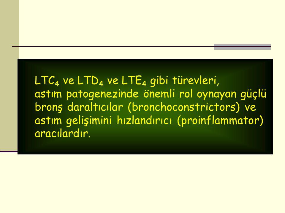 LTC4 ve LTD4 ve LTE4 gibi türevleri,