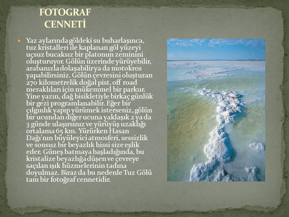 FOTOGRAF CENNETİ